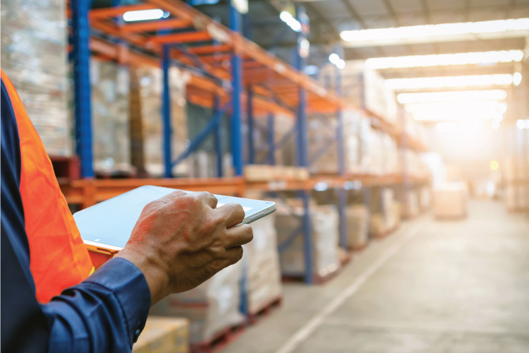 Man in Warehouse looking a tablet working